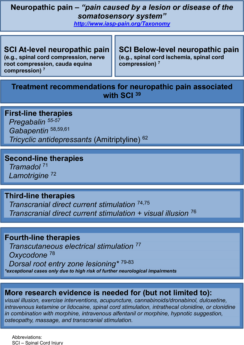 Figure 2 from Neuropathic Pain and Spinal Cord Injury: Phenotypes and  Pharmacological Management   Semantic Scholar