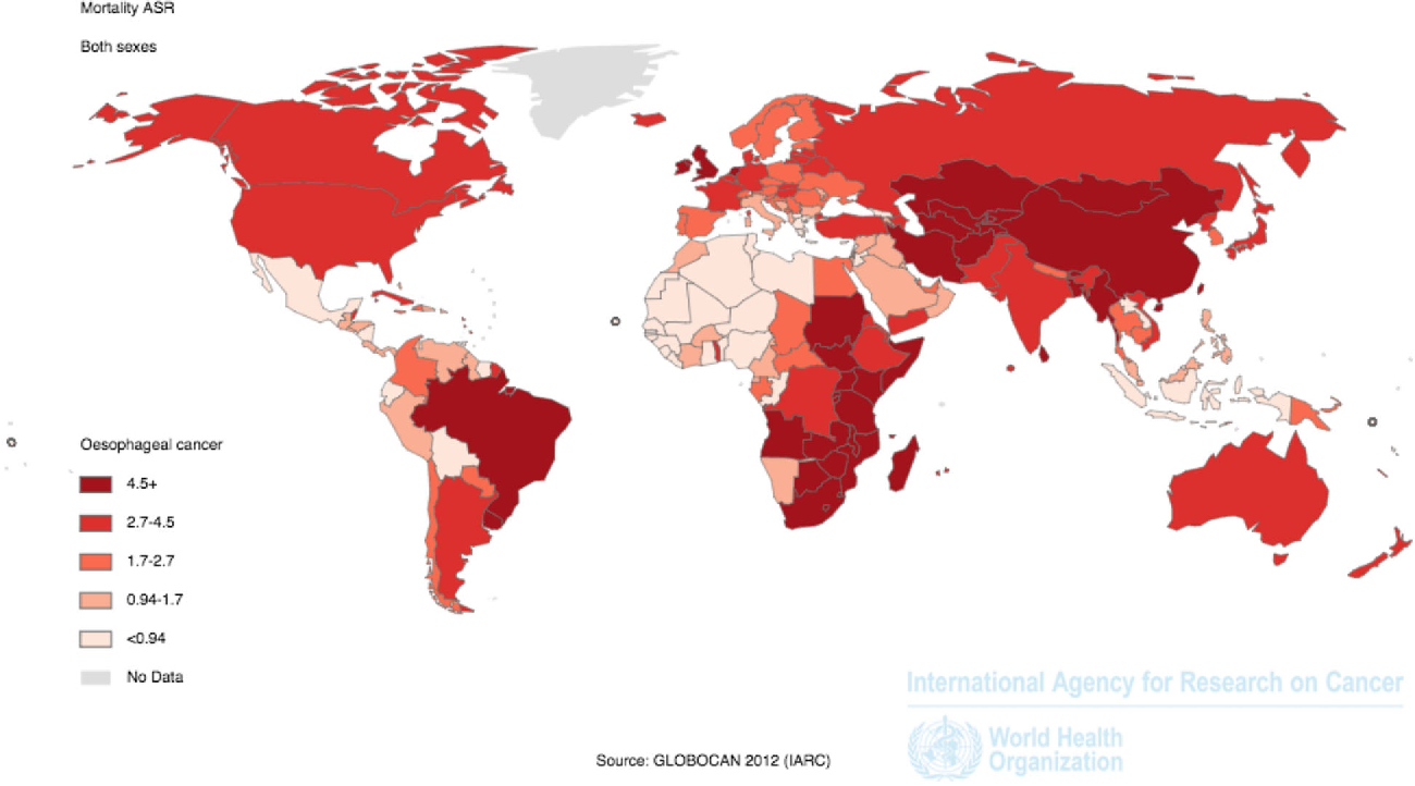 Figure 4 from Global trends in esophageal cancer. - Semantic ... on current cancer statistics map, abortion rate map, skin cancer map, obesity rate map, cancer incidence world map, us cancer map, death rate map, unemployment rate map, cancer death map, tuberculosis rate map,