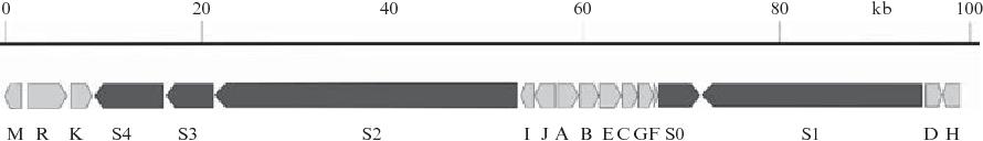 figure 10.2