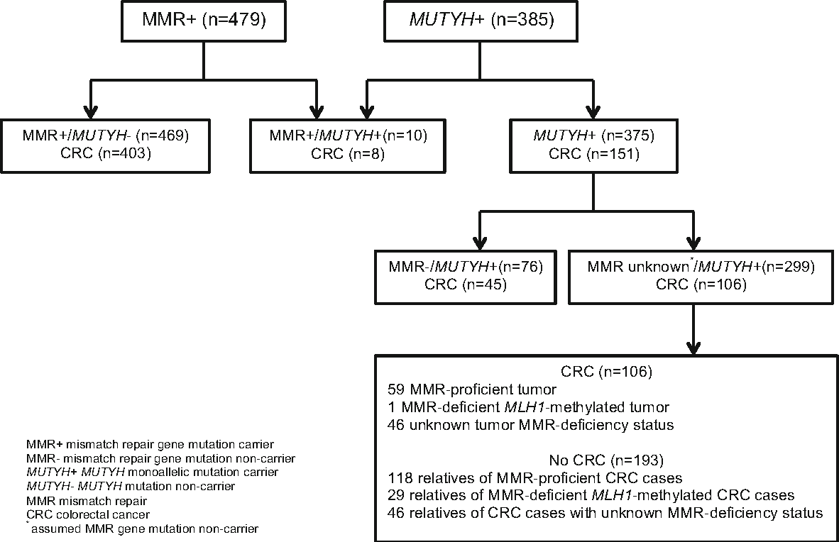 Risk Of Colorectal Cancer For People With A Mutation In Both A Mutyh And A Dna Mismatch Repair Gene Semantic Scholar