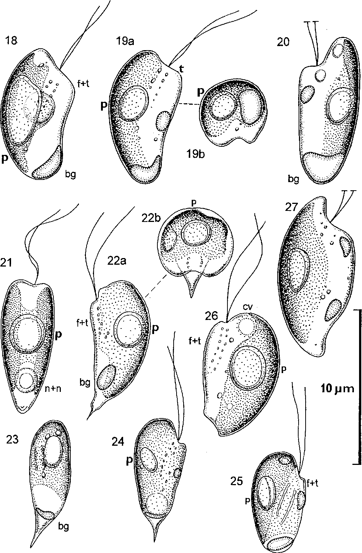 figure 18–27