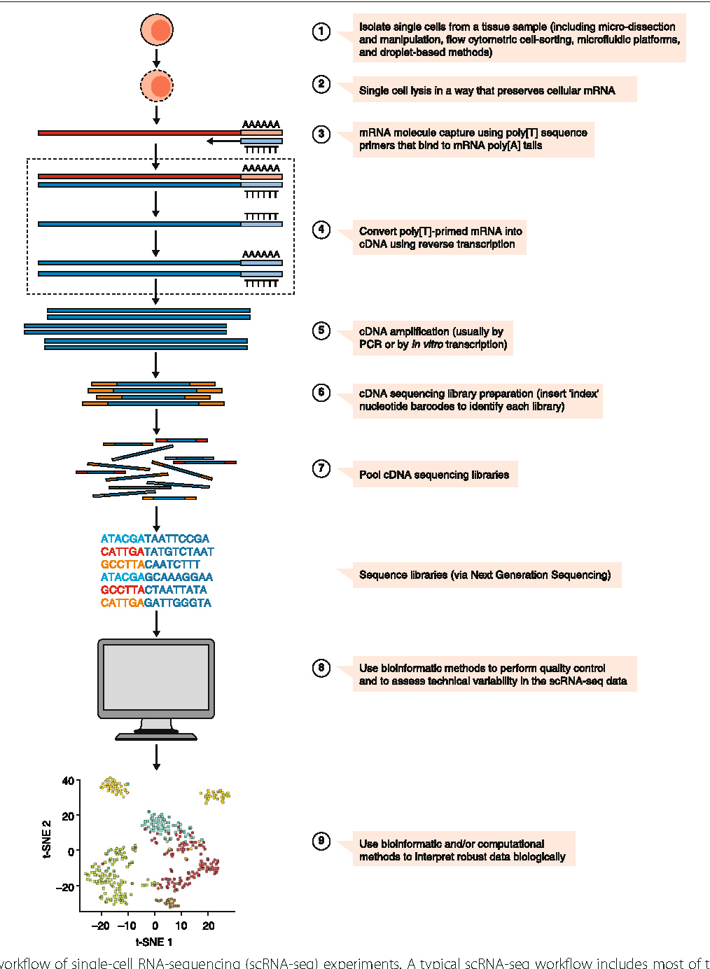 A practical guide to single-cell RNA-sequencing for