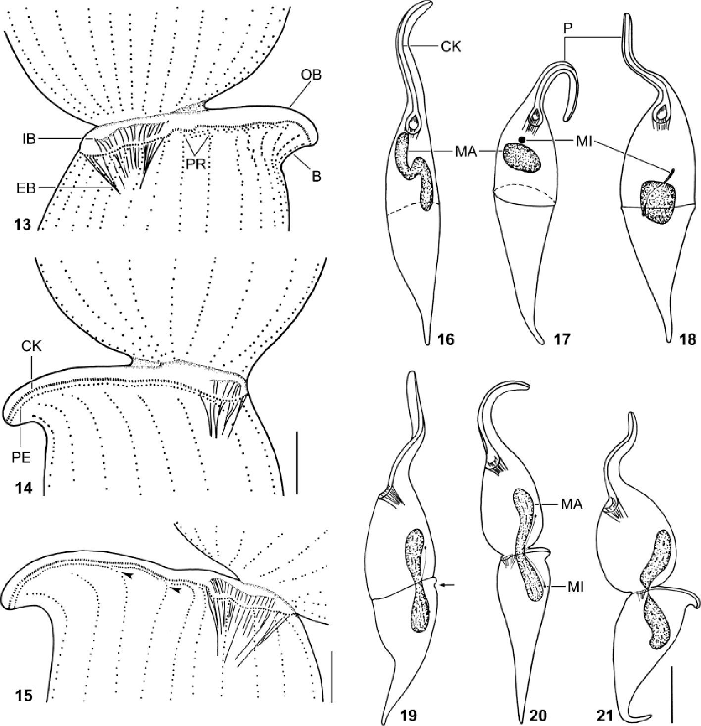 figure 13–21
