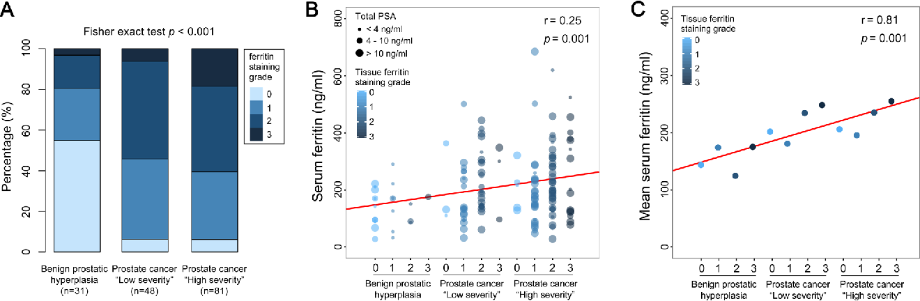 Figure 3 From Serum Ferritin In Combination With Prostate Specific Antigen Improves Predictive Accuracy For Prostate Cancer Semantic Scholar
