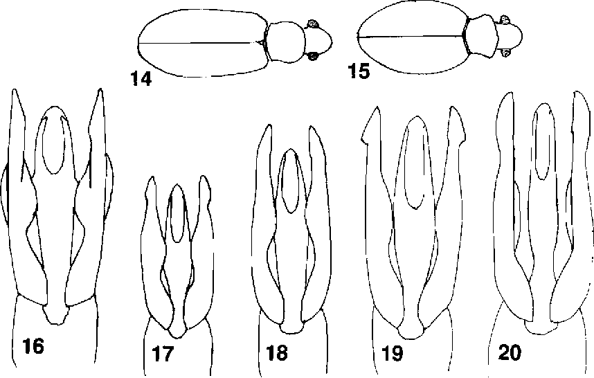 figure 14-20