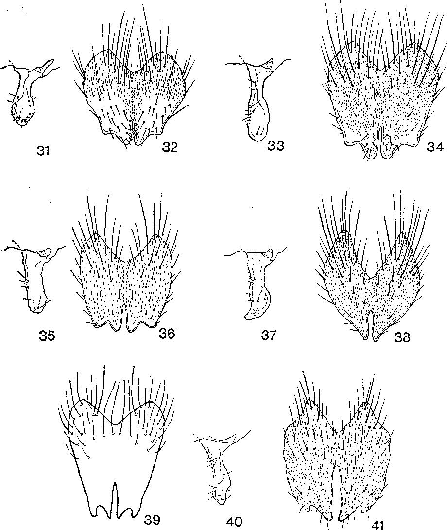 figure 31-41
