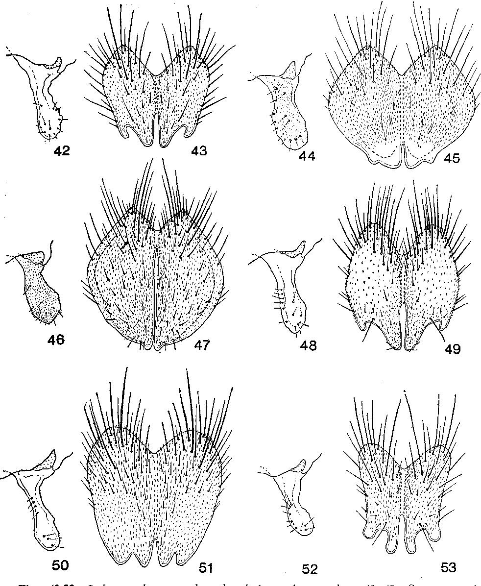 figure 42-53