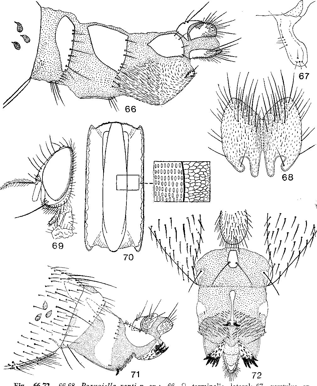 figure 66-72