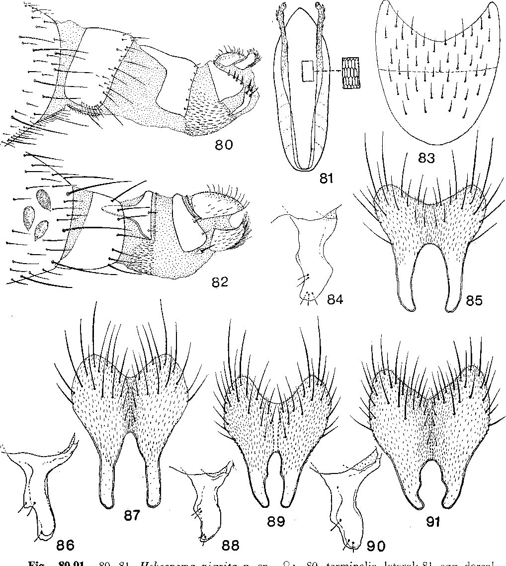 figure 80-91