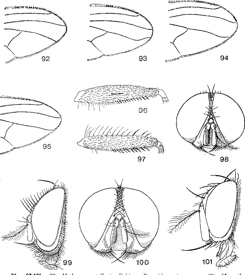 figure 92-101