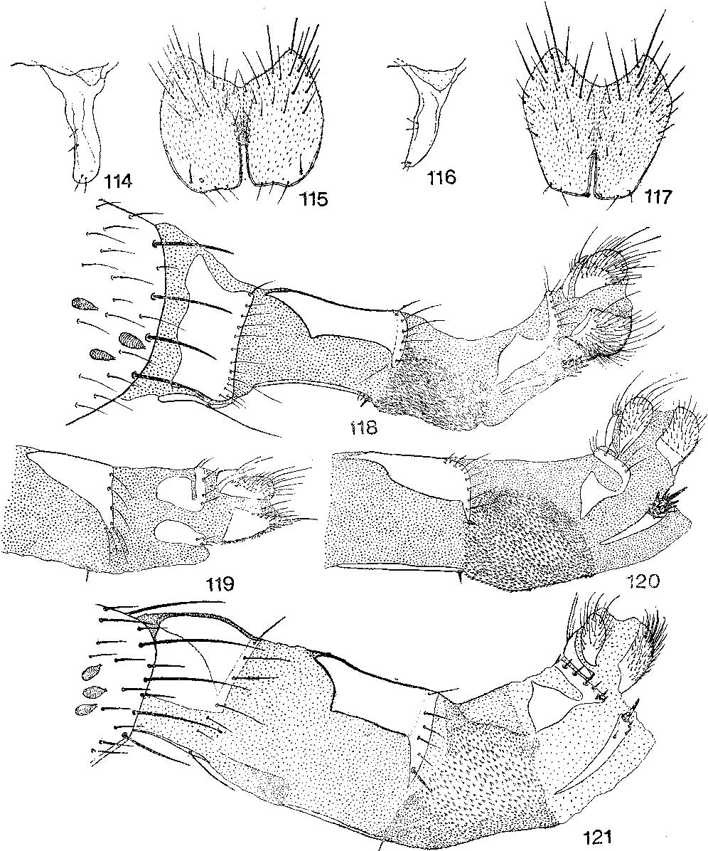 figure 114-121
