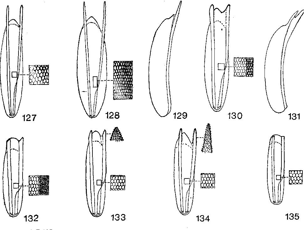 figure 127-135