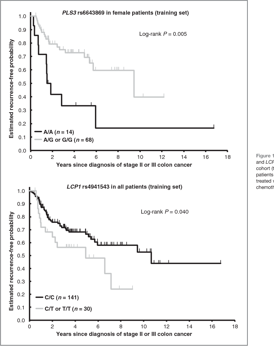 Figure 1 From Plastin Polymorphisms Predict Gender And Stage Specific Colon Cancer Recurrence After Adjuvant Chemotherapy Semantic Scholar
