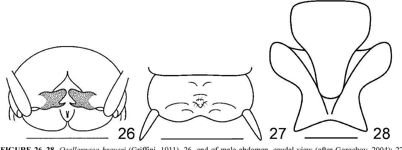 figure 26–28