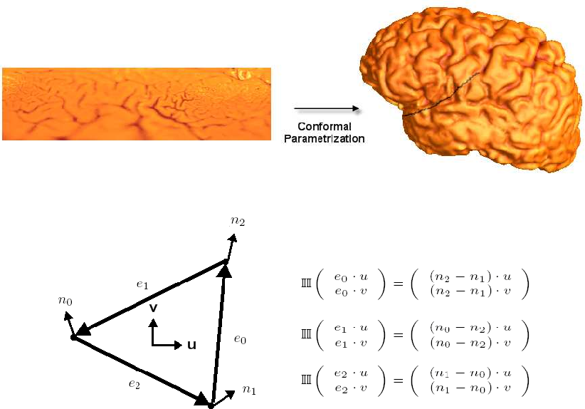 PDF] Brain anatomical feature detection by solving partial