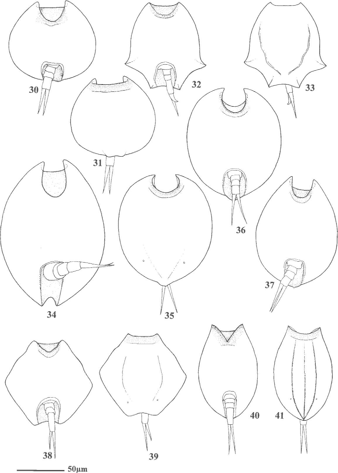 figure 30–41