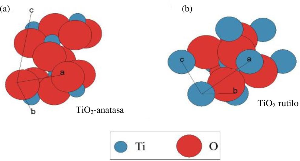Figure 1 3 From Caracterización Y Respuesta Antibacteriana