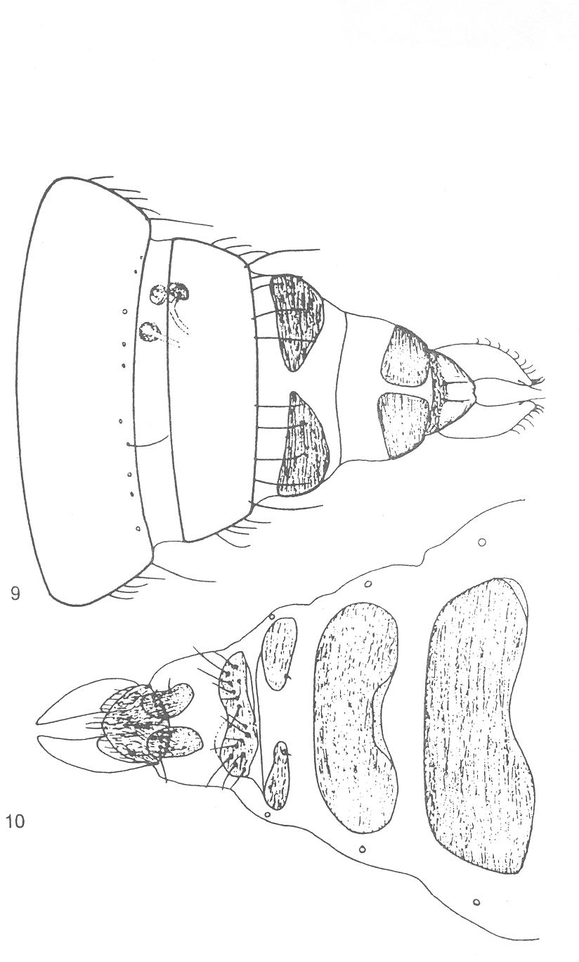 figure 9-10