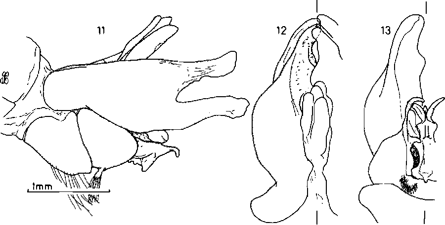 figure 11-13