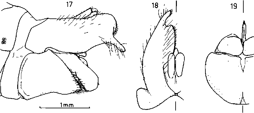 figure 17-19