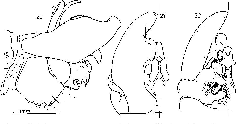 figure 20-22