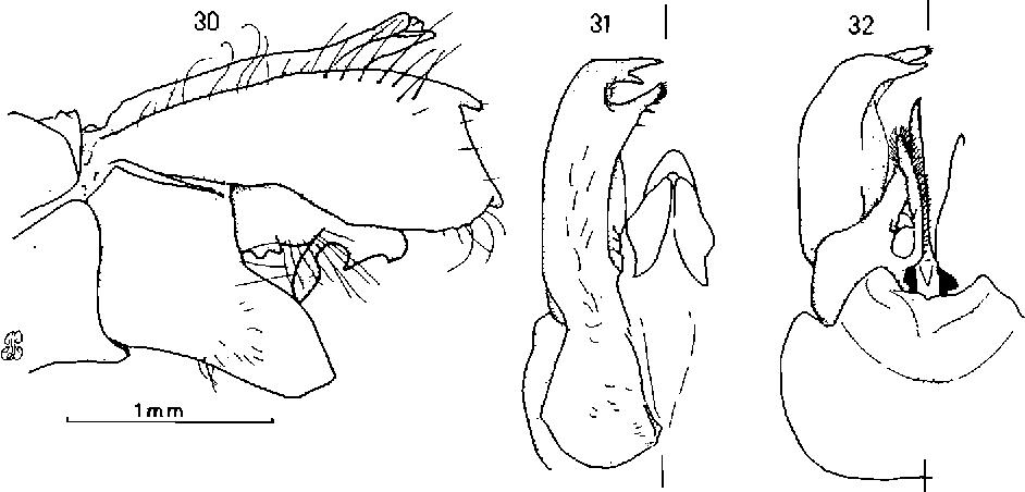 figure 30-32