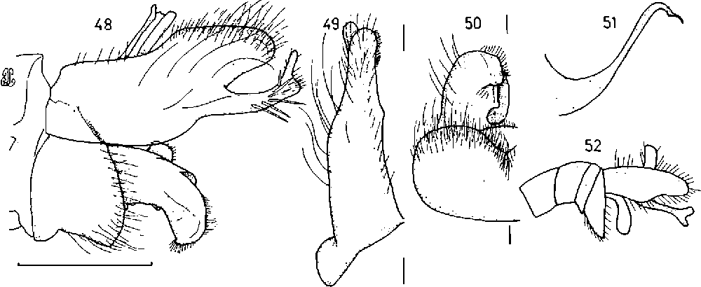 figure 48-52