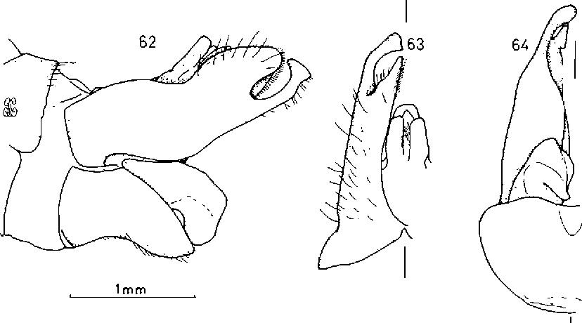 figure 62-64