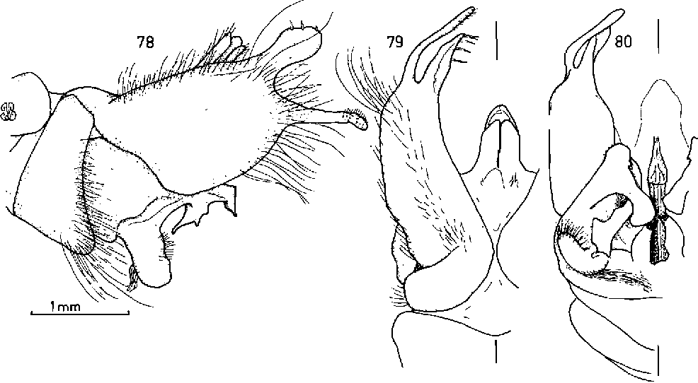 figure 78-80
