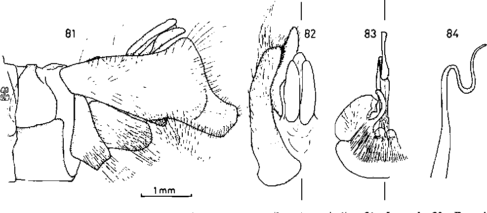 figure 81-84