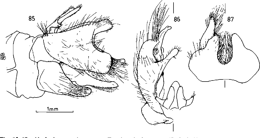 figure 85-87