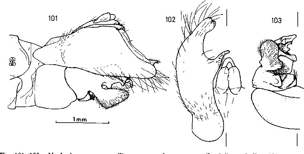 figure 101-103