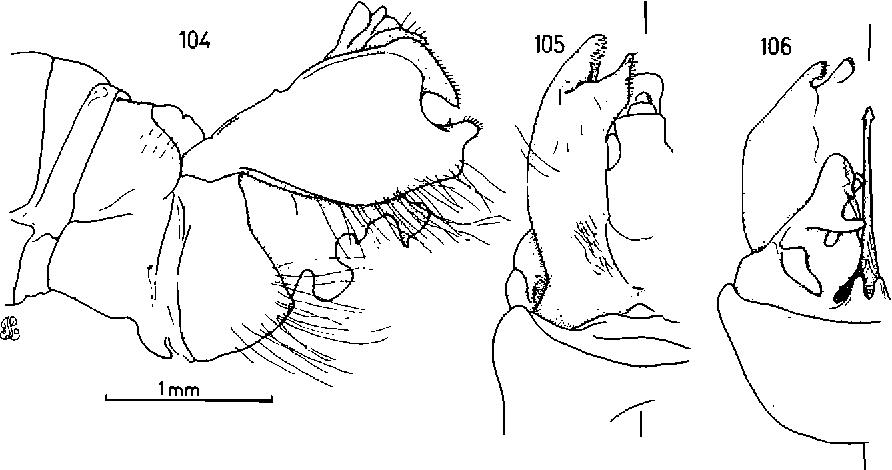 figure 104-106