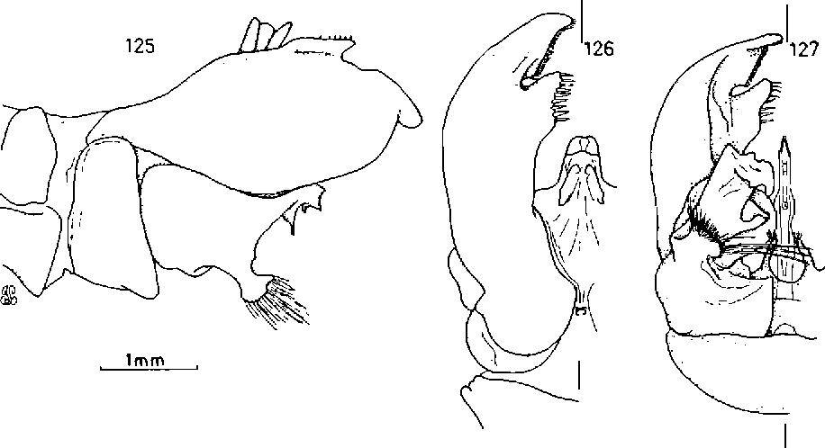 figure 125-127