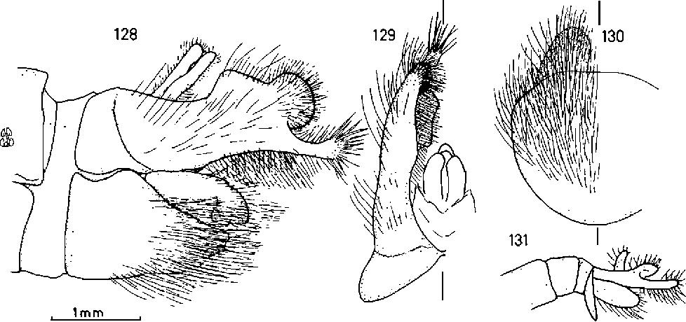 figure 128-131