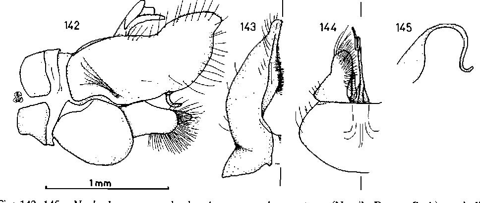 figure 142-145