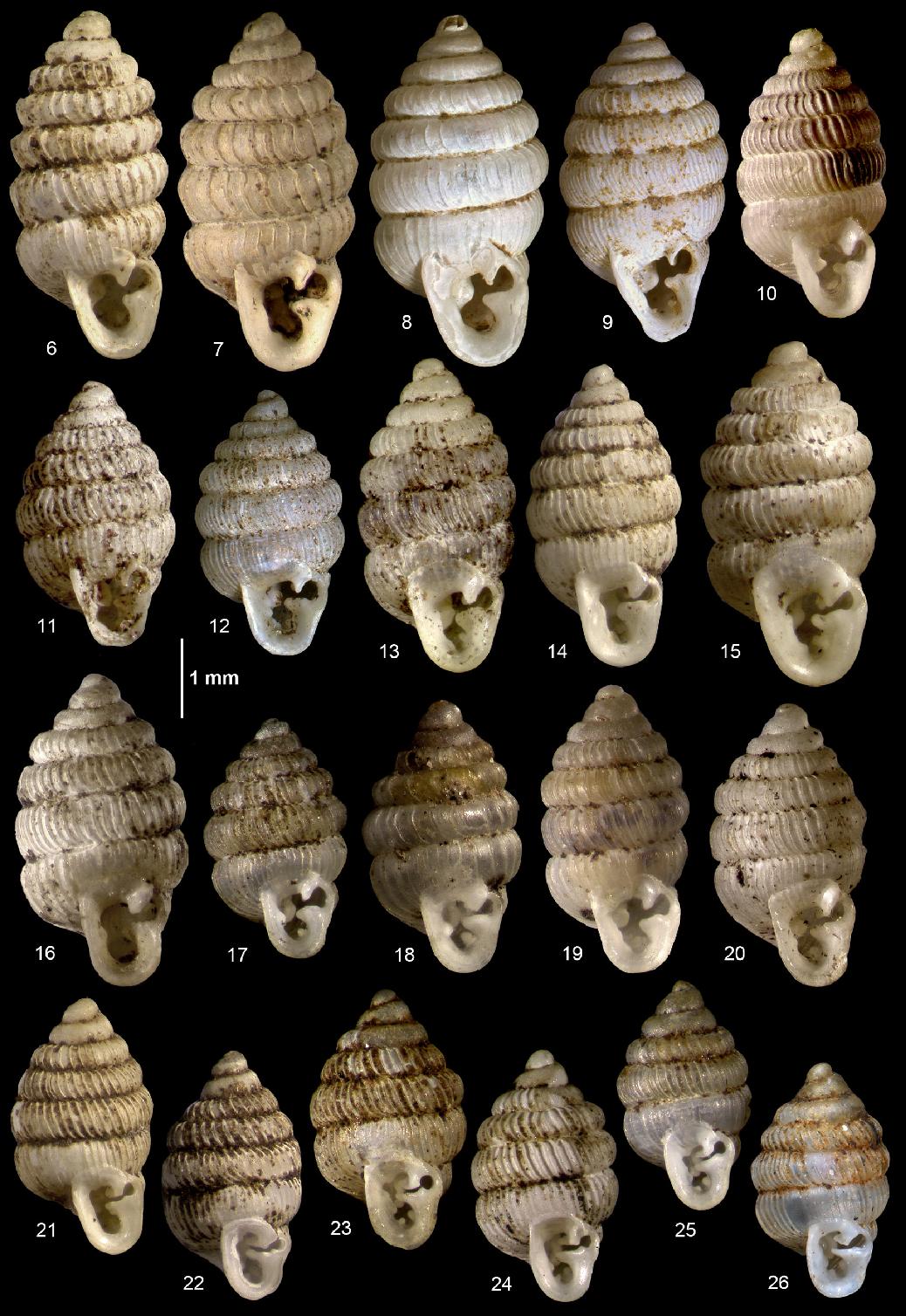 figure 6-26