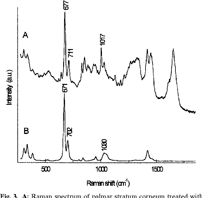 Figure 3 from Monitoring the Penetration Enhancer Dimethyl