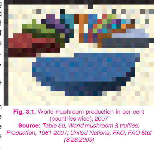 PDF] Mushrooms: cultivation, marketing and consumption