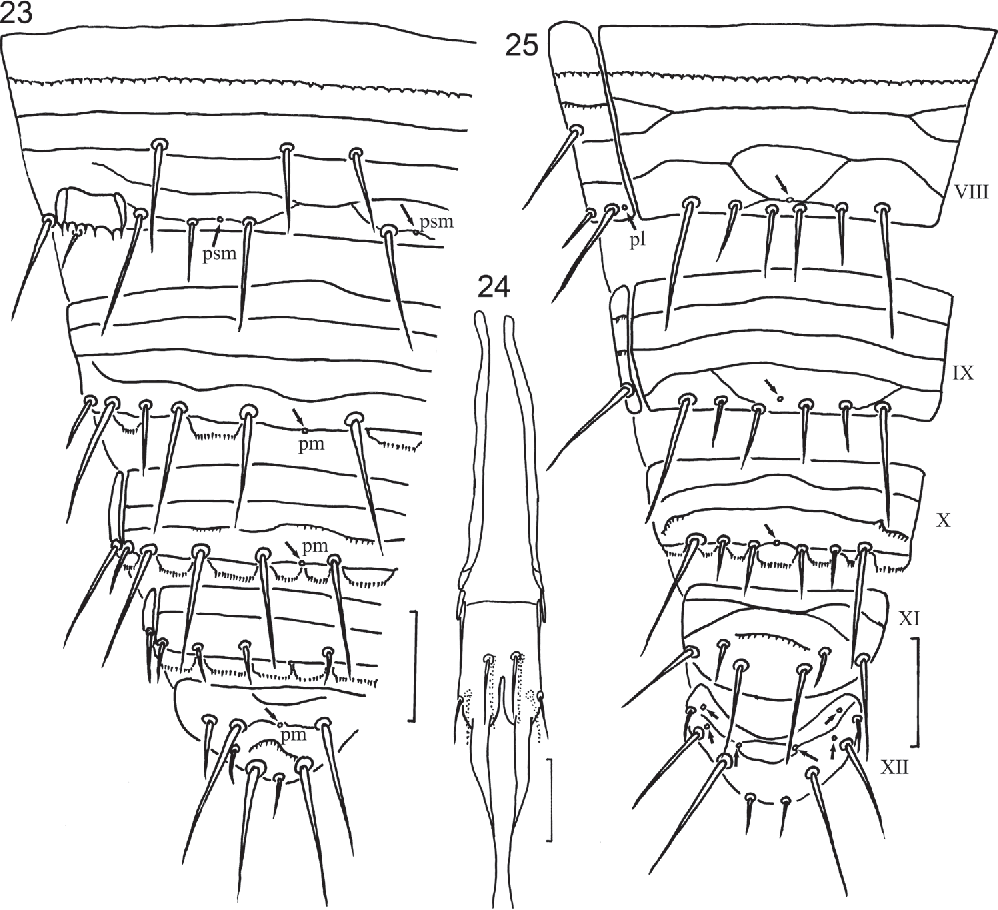figure 23–25