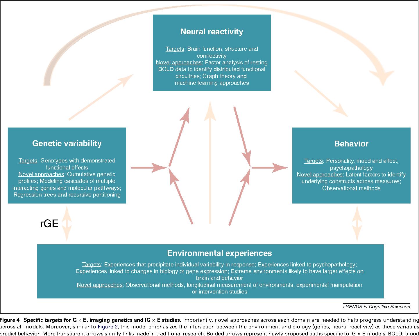Gene Environment Interaction >> Figure 4 From Understanding Risk For Psychopathology Through