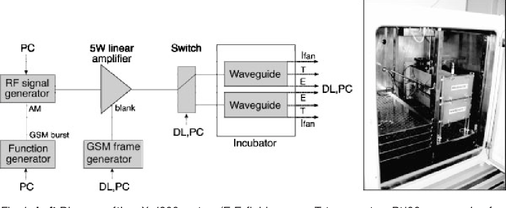 PDF] Continuous wave and simulated GSM exposure at 1.8 W/kg and ...