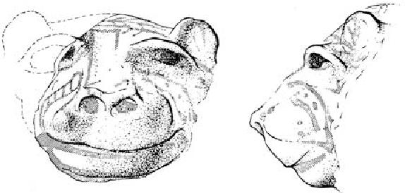 figure 3.71