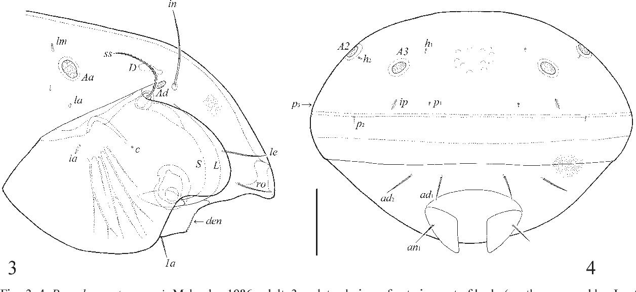 figure 3–4