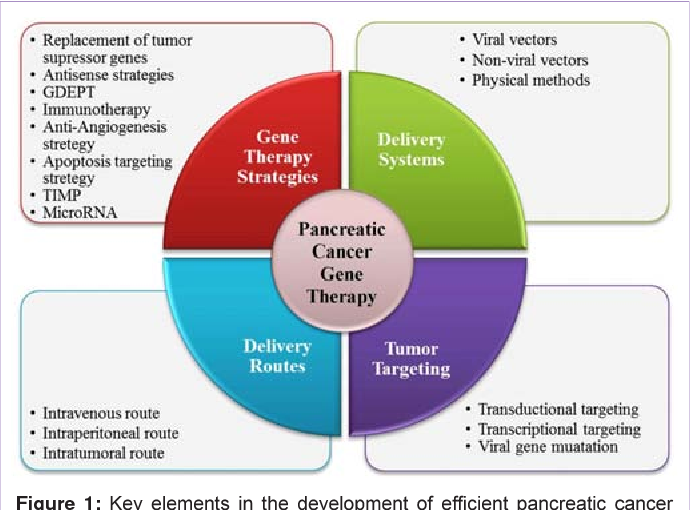 PDF] Gene Therapy for Treatment of Pancreatic Cancer