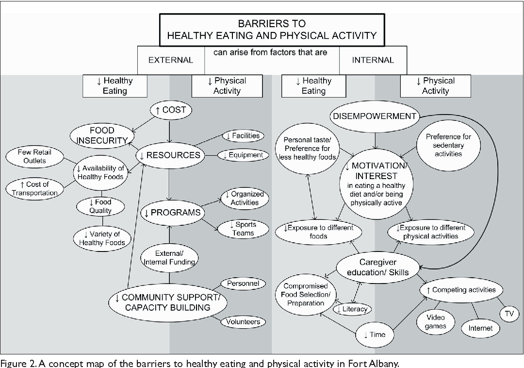PDF] Barriers and supports for healthy eating and physical
