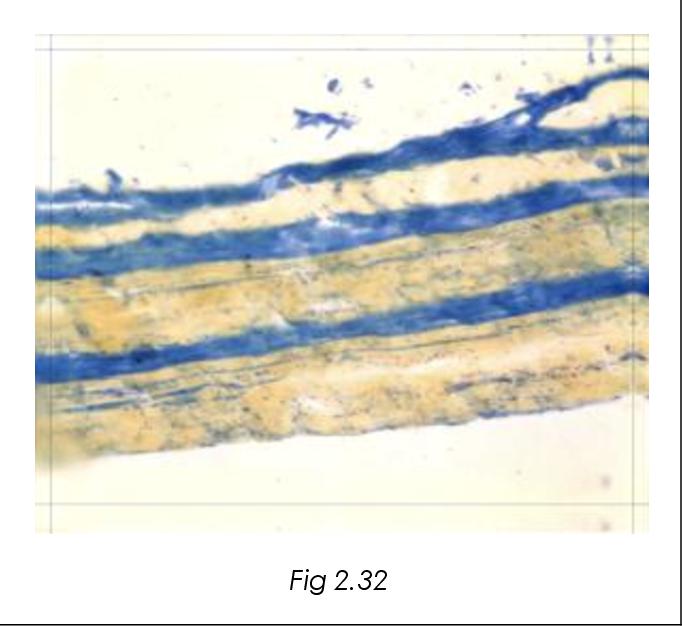 figure 2.32