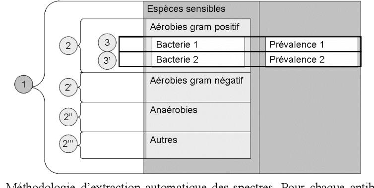 Figure 2 From Mise A Disposition Des Spectres D Activite Des Antibiotiques Pour Le Medecin Generaliste Methode Et Resultats Semantic Scholar