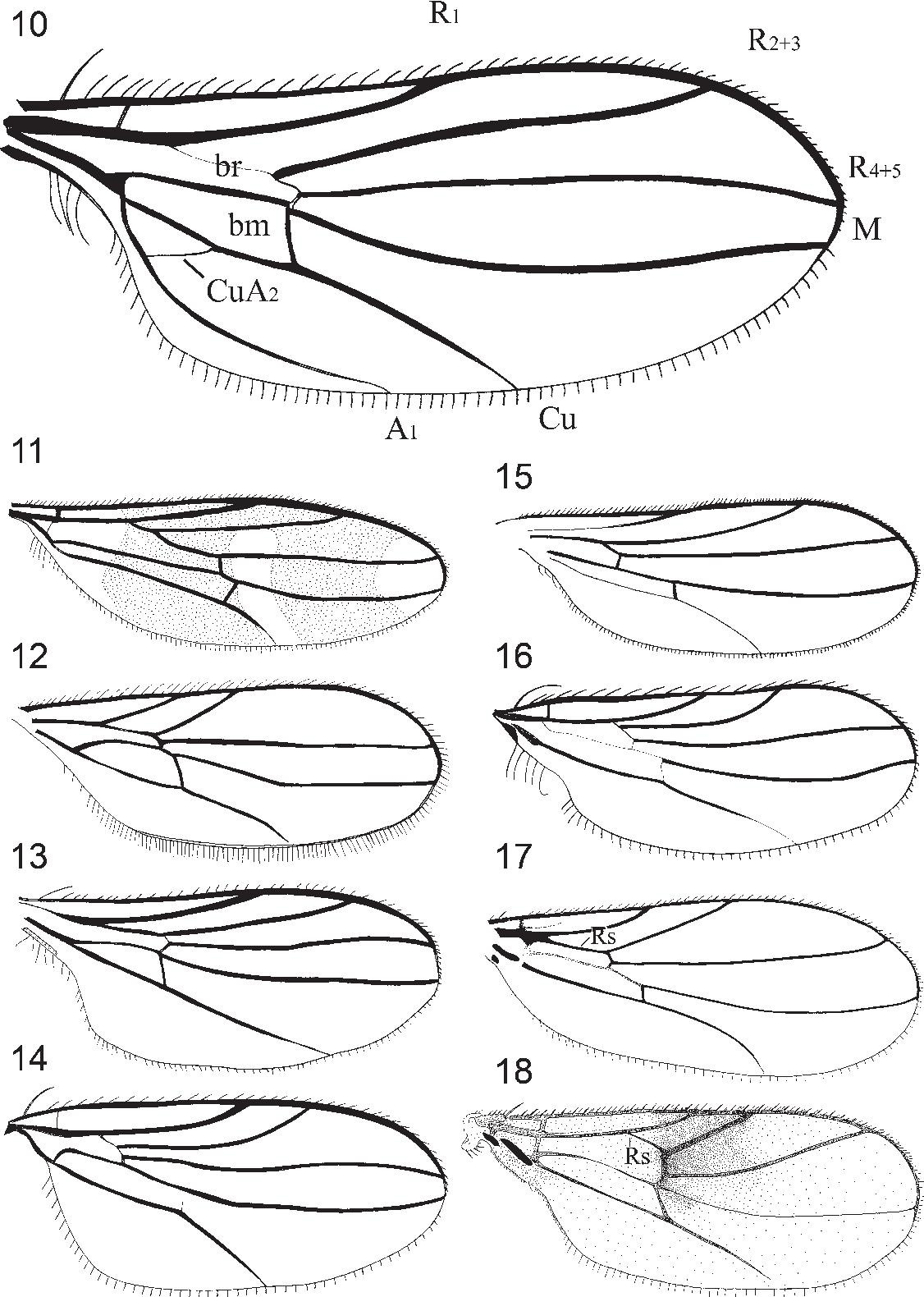 figure 10-18