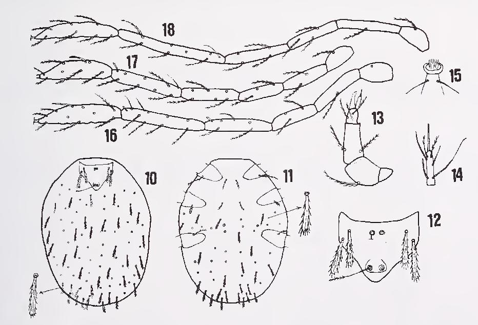 figure 10—18